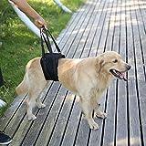 Rainbowsun Hunde Tragehilfe Hundegeschirr für Probleme an der Wirbelsäule, der Hüfte und Den Knien Ihres Hundes Einstellbar Dauerhaft Wasserdicht aus Hochwertigem Material Neoprene Schwarz
