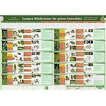 Essbare Wildkräuter für Grüne Smoothies Teil 2 - Wandposter (DINA2) - (2017) - Schnell eindeutig erkennen, selber sammeln und mit gutem Gefühl ... selber sammeln und mit gutem Gefühl genießen)