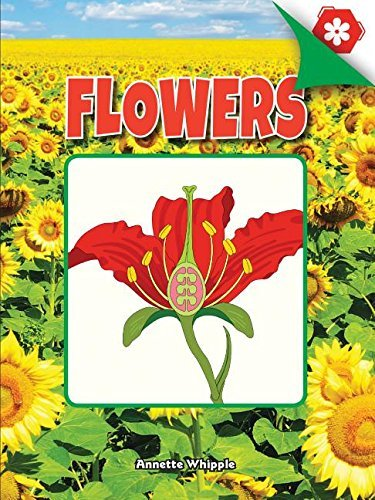 Flowers (A Closer Look at Plants) (English Edition)