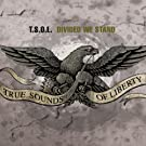 Divided We Stand [Explicit]