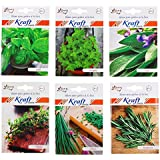 [Sponsored Products]Herb Combo Basil (30 Seeds), Oregano (50 Seeds), Thyme (100 Seeds), Sage (50 Seeds), Rosemary (10 Seeds), Chives (20 Seeds) By Kraft Seeds