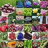 Portal Cool 46 de Pistacho 5 x Semilla: Mixto Estilo Raras Plantas del Jardãn de la Decoraciã³n Vegetales Semillas de Flor