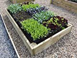 Premier – Raised Bed Construction Kit, Height 23 cm 183 x 122 cm (6ft x 4ft)