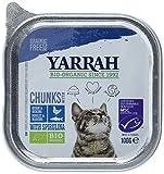 Yarrah Bröckchen Fisch 100g Bio Katzenfutter, 16er Pack (16 x 0.1 kg)