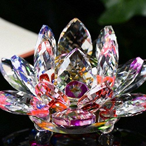 Licht-kristall-glas (Xshuai Wohnaccessoires Lotus Kristall Glas Figur Briefbeschwerer Ornament Feng Shui Dekor Kollektion Mode neu (mehrfarbig) (D))