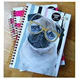 2017-2018Agenda scolaire Planning Mid Year, Semainier A5 chien