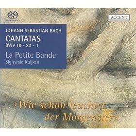 Gleichwie der Regen und Schnee vom Himmel f�llt, BWV 18: Chorale Recitative: Mein Gott, hier wird mein Herze sein (Tenor, Bass)
