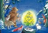 Fröhliche Waldweihnacht: Ein Text-Türchenkalender