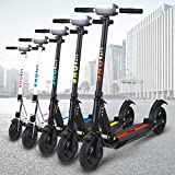 E-Scooter eFlux Lite One 350W Dauerleistung