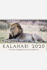 Kalahari - Tierreichtum im Kgalagadi Transfrontier Park, Südafrika (Tischkalender 2020 DIN A5 quer): Das Naturschutzgebiet in der Kalahariwüste ist ... (Monatskalender, 14 Seiten ) (CALVENDO Tiere) Kalender