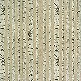 Gardinenstoff Stoff Dekostoff Birken Baumstämme Holz natur weiß