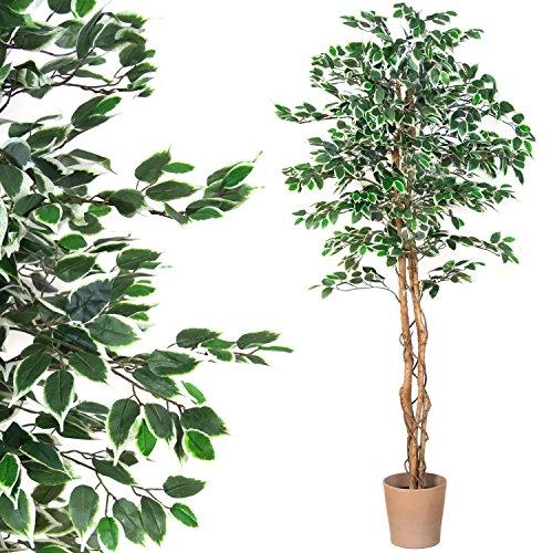 Großer grüner Ficus Baum, Echtholzstamm, Kunstbaum, Kunstpflanze, Dekobaum – Variante: 160 oder 190 cm - 2