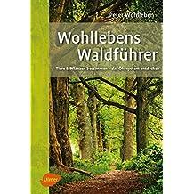 Wohllebens Waldführer: Tiere und Pflanzen bestimmen – das Ökosystem entdecken (German Edition)