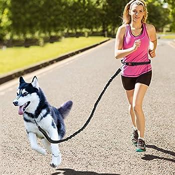 Topist Ceinture mains libres pour laisse, antichocs et ceinture réglable, avec couture réfléchissante, parfait pour course à pied, Jogging, randonnée et marche