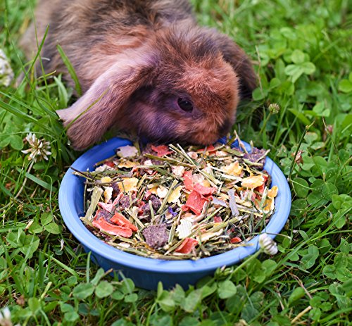 15kg Kaninchenfutter Wiesenknopf Strukturfutter mit Kräuter - 5