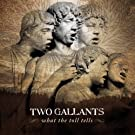 What the Toll Tells [Vinyl LP]