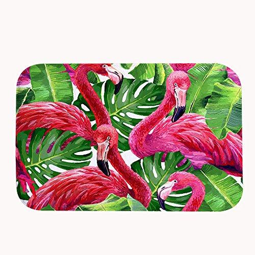 TrUiuiui Schönes Pink Rutschfeste Badematte Flamingos Super Saugfähig Coral Fleece Bereich Teppich Fußmatte Eingang Teppich Fußmatten für Vorderseite Außen Türen, Korallenvlies, 20''x31.5''(50x80cm)