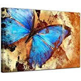 """Bilderdepot24 Cuadros en Lienzo """"mariposa"""" - 40 x 30 cm - listo tensa, directamente desde el fabricante"""