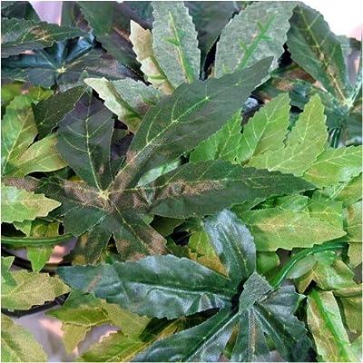 Reptile Vivarium Jungle Silk Plant Decor Abuliton Large by Reptipet