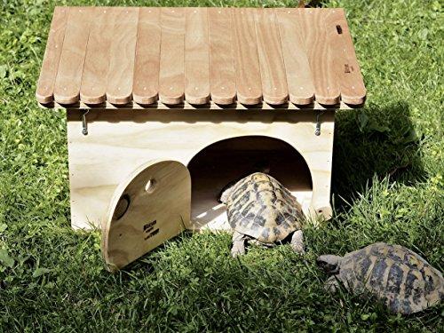 Nouveauté Blitzen, maison-refuge De Luxe pour tortues terrestres avec le fond
