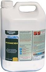 New Plast 2960 - Alghicida Doppia Funzione per Acqua Piscina, Tanica 5 lt
