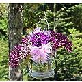Windlichter, 6 Stück mit Henkel, Laterne Glaslaterne Garten-Deko, Ø 9cm von BODA Creative bei Du und dein Garten