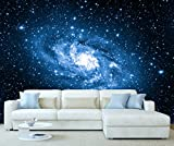 StickersWall Space Milky Way Galaxy Wall Mural Photo Wallpaper Picture Self Adhesive 1064 (342cm(W) x 242cm(H))