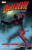 Daredevil: Love's Labors Lost (Daredevil (1964-1998))