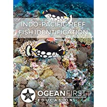 Indo-Pacific Reef Fish Identification (English Edition)