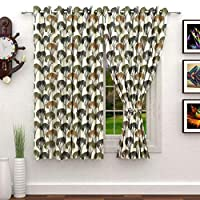 Story at Home 200 GSM Polyester 2 Pieces Window Curtain, Beige/Brown, 118 cm X 152 cm