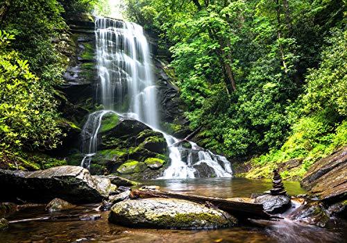 wandmotiv24 Fototapete Natur-wasserfall Bach Dschungel XS 150 x 105cm - 3 Teile Fototapeten, Wandbild, Motivtapeten, Vlies-Tapeten Urwald, Dschungel, Tropen M1066