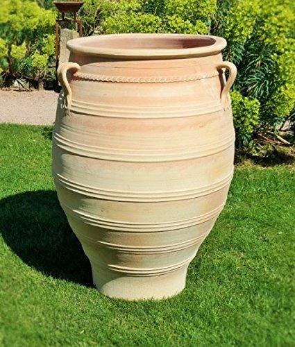 39 frostfeste terracotta anfora in creta thymus fatto a for Anfore terracotta da giardino