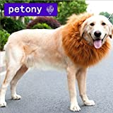 petony Pet Costume Lion Mane peluca cabello para perro, diseño navideño de Halloween ropa Festival Fancy Dress Up (neckcircumference (11–13) pulgadas)