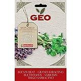 Geo Trigo Sarraceno Semillas para germinar, Marrón, 12.7x0.7x20 cm