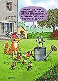 Humorous Greeting Card (PH6261) Birthday - New Cat - From The Animal Function Range.