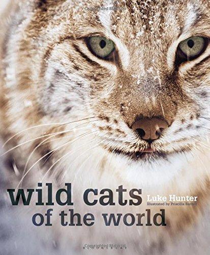 Wild Cats of the World by Luke Hunter (2015-10-13)