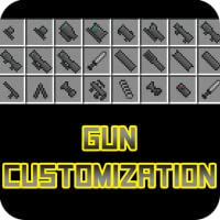Gun Customization