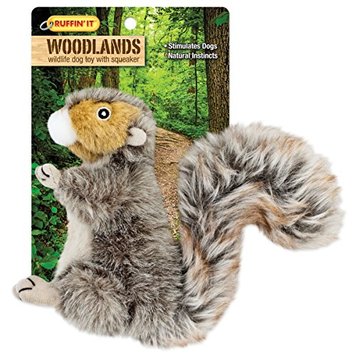 Westminster Pet Products Woodlands Plüsch Eichhörnchen Hundespielzeug, klein (Hundespielzeug Stuff Tiere)