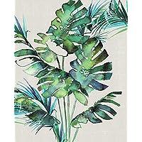 "Summer Thornton ""Monstera Leaves"" Canvas Print, Cotton, Multi-Colour, 3.20 x 40.00 x 50.00 cm"