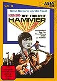 Asia Line: Kendo - Der tödliche Hammer / Vol. 17