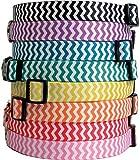 Yellow Dog Design Hundehalsband, Chevron-Streifen, 8 Farben und 4 Größen, jetzt mit Tag-A-Long ID Tag System