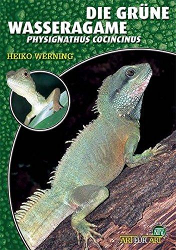 Die Grüne Wasseragame: Physignathus cocincinus (Art für Art)