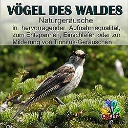 Sound Akademie | Format: MP3-DownloadVon Album:Vögel des Waldes, Naturgeräusche in hervorragender Aufnahmequalität, zum Entspannen, Einschlafen oder zur Milderung von Tinnitus GeräuschenErscheinungstermin: 10. September 2018 Download: EUR 1,29