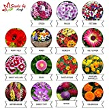 Kraft Seeds 15 Varieties of Flower Seeds Heirloom Seed For Your Garden Beautiful Bloom This Season Genuine High Germination Seeds