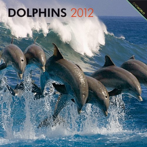 Dolphins 2012
