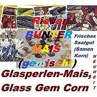 40x Gigante Colorati Mais Vetro Gem mais Arcobaleno mais commestibile gustoso und buona Gusto Cereali (Rose Garden Di Bambù)