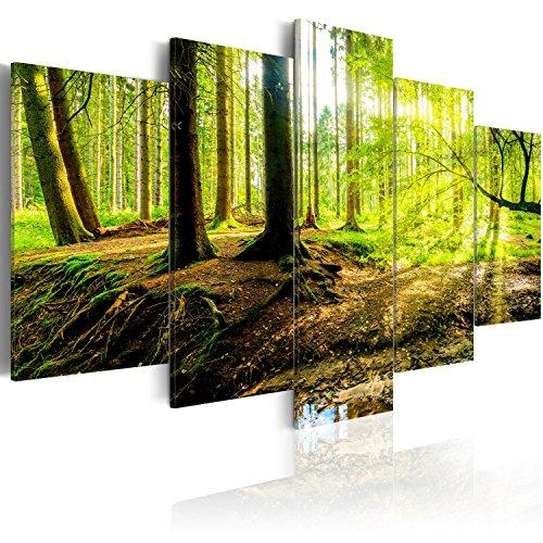 murando - Acrylglasbild Abstrakt 100x50 cm - Bilder Wandbild - modern - Decoration- 5 Teilig Wald c-B-0175-k-m