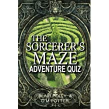 The Sorcerer's Maze: Volume 1 (You Say Which Way Adventure Quiz)