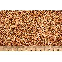 (Grundpreis 1,49 Euro/L) - 10 Liter Premium Bachflohkrebse - Koi - Gammarus ca. 1,0 kg