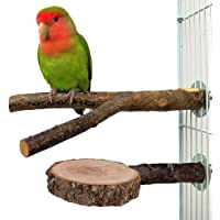 Nynel Lot de 2 perchoirs en Bois Naturel pour Perroquet, perchoirs interactifs pour Cage à Oiseaux, Jouets pour Oiseaux